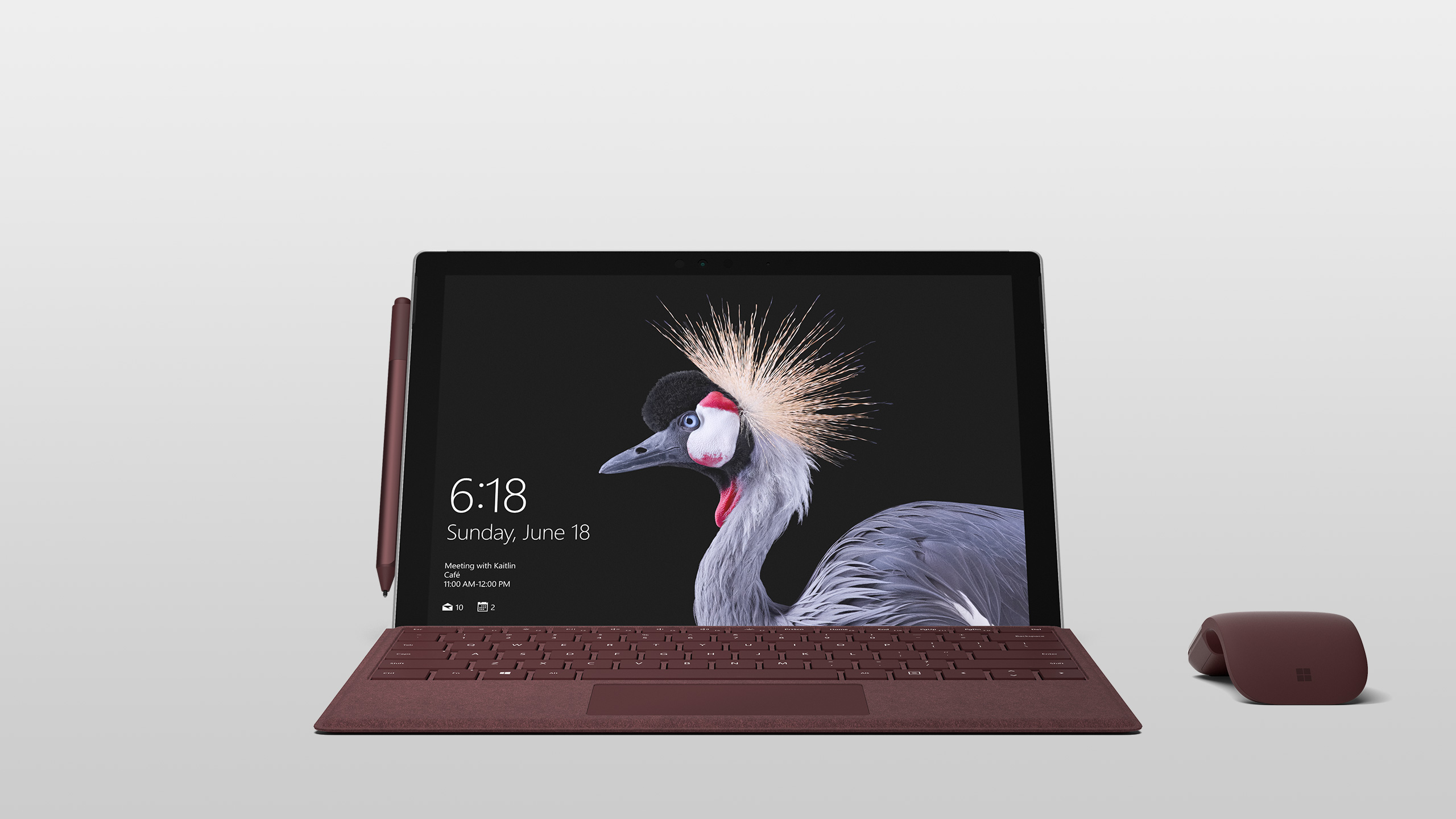 Surface Go bordeauxrot